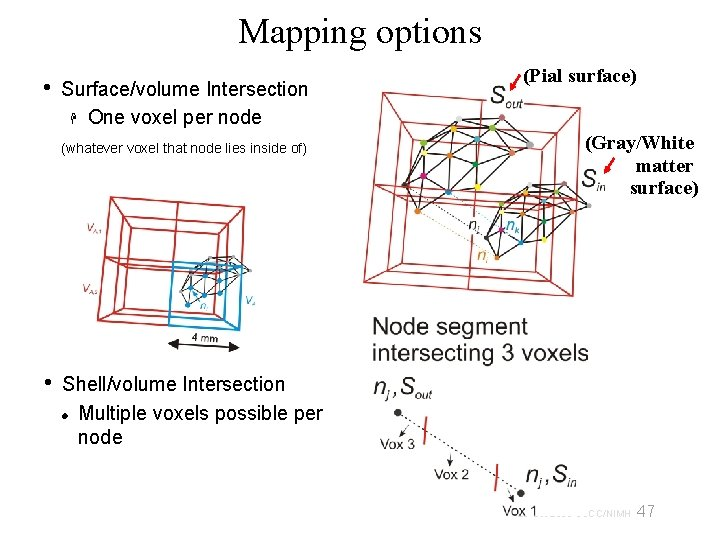 Mapping options • Surface/volume Intersection One voxel per node (whatever voxel that node lies