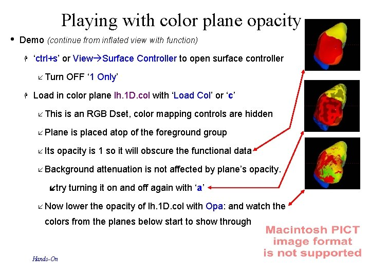 Playing with color plane opacity • Demo (continue from inflated view with function) 'ctrl+s'