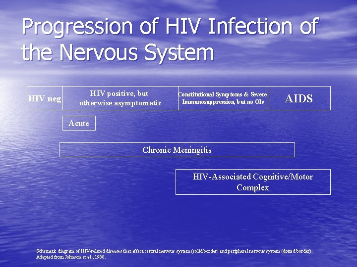 Progression of HIV Infection of the Nervous System HIV neg HIV positive, but otherwise