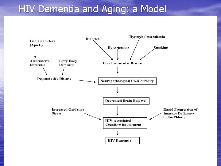 HIV Dementia and Aging: a Model
