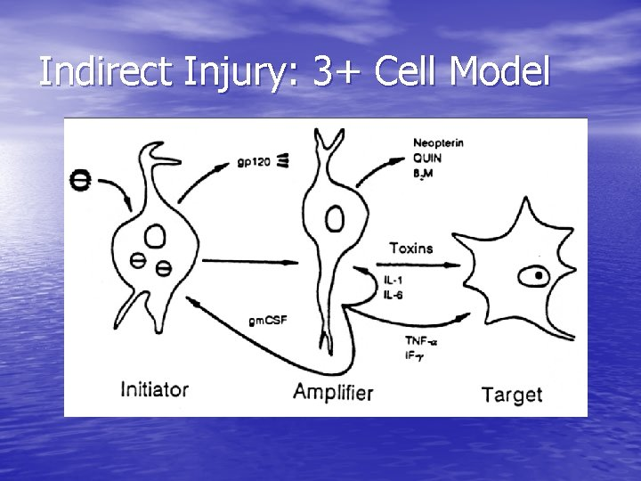 Indirect Injury: 3+ Cell Model