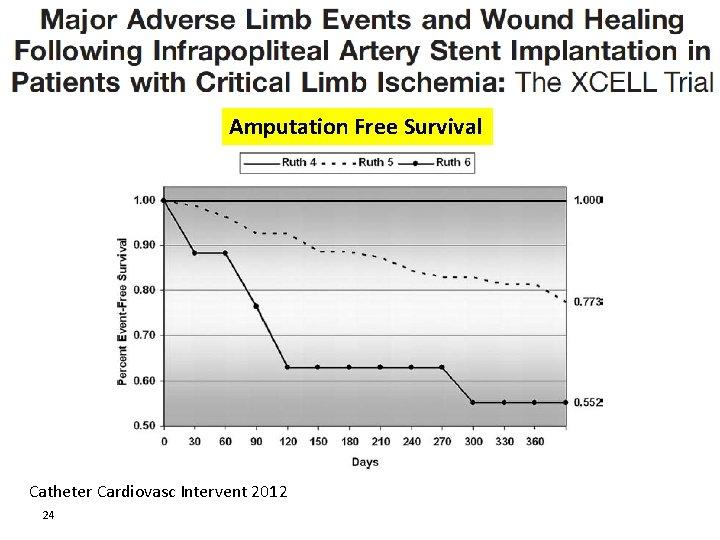 Amputation Free Survival Catheter Cardiovasc Intervent 2012 24