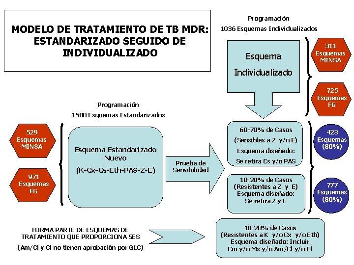 Programación MODELO DE TRATAMIENTO DE TB MDR: ESTANDARIZADO SEGUIDO DE INDIVIDUALIZADO 1036 Esquemas Individualizados