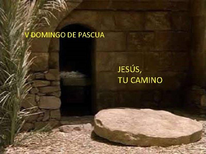 ¡Da vida! V DOMINGO DE PASCUA ¡Disfruta JESÚS, de la vida! TU CAMINO