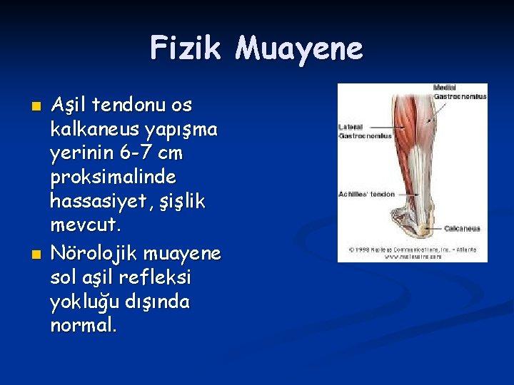 Fizik Muayene n n Aşil tendonu os kalkaneus yapışma yerinin 6 -7 cm proksimalinde