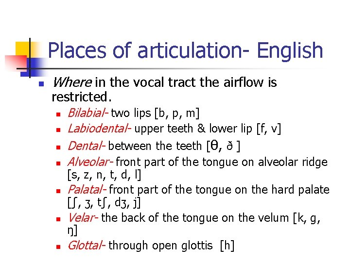 Places of articulation- English n Where in the vocal tract the airflow is restricted.