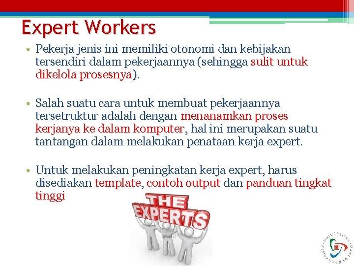 Expert Workers • Pekerja jenis ini memiliki otonomi dan kebijakan tersendiri dalam pekerjaannya (sehingga