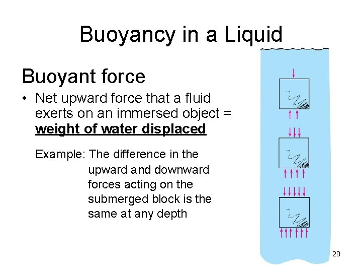 Buoyancy in a Liquid Buoyant force • Net upward force that a fluid exerts