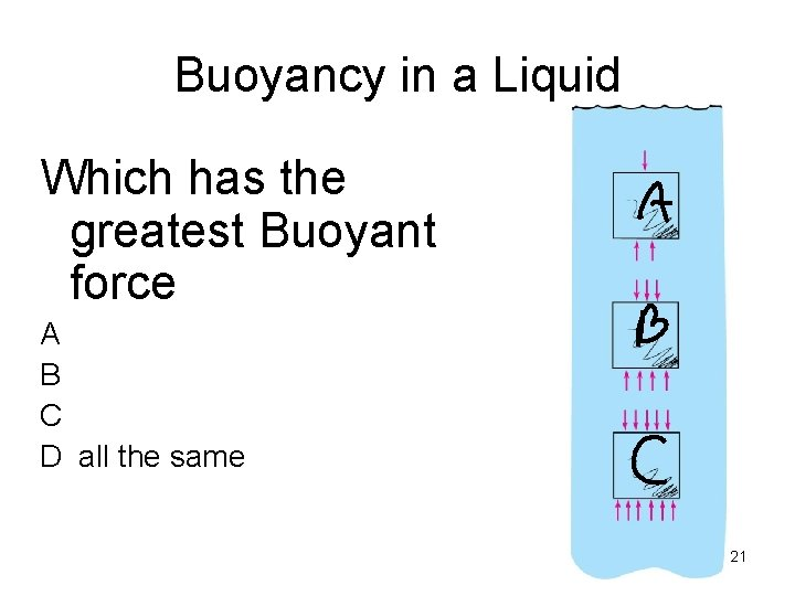 Buoyancy in a Liquid Which has the greatest Buoyant force A B C D