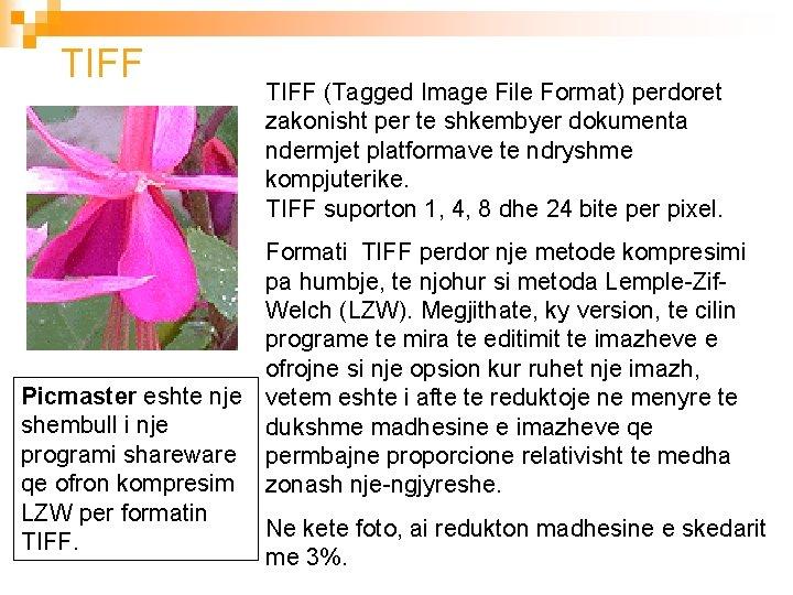 TIFF (Tagged Image File Format) perdoret zakonisht per te shkembyer dokumenta ndermjet platformave te