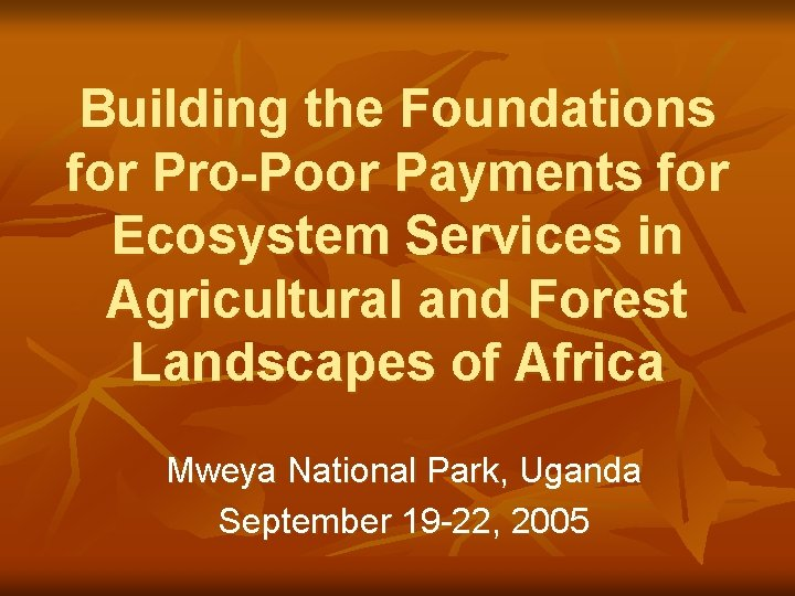 Building the Foundations for Pro-Poor Payments for Ecosystem Services in Agricultural and Forest Landscapes