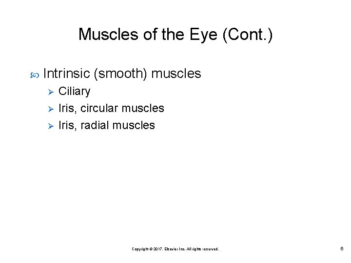 Muscles of the Eye (Cont. ) Intrinsic (smooth) muscles Ø Ø Ø Ciliary Iris,