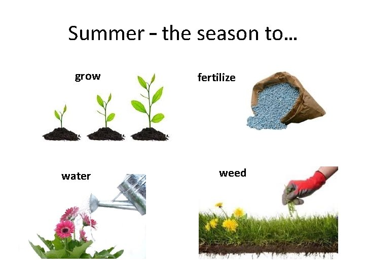 Summer – the season to… grow water fertilize weed