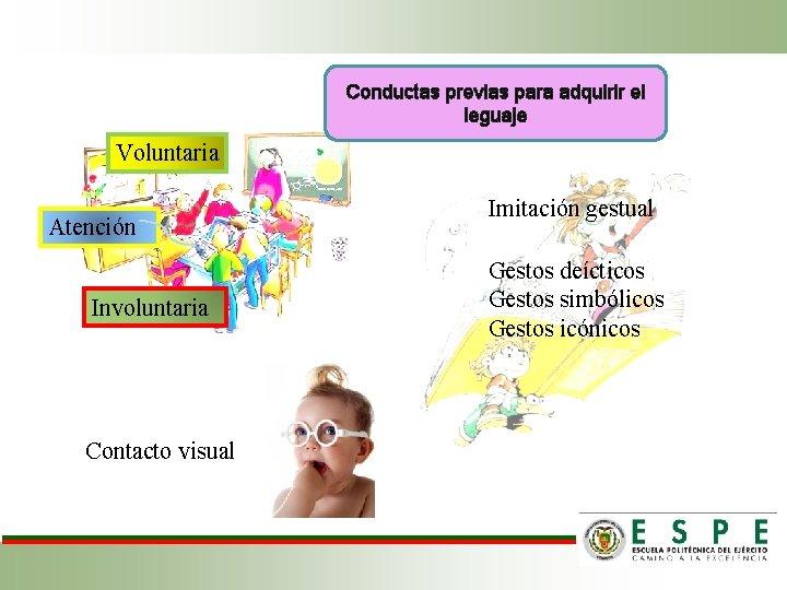 Conductas previas para adquirir el leguaje Voluntaria Atención Involuntaria Contacto visual Imitación gestual Gestos