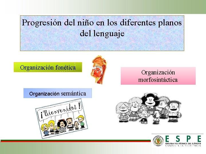 Progresión del niño en los diferentes planos del lenguaje Organización fonética Organización semántica Organización