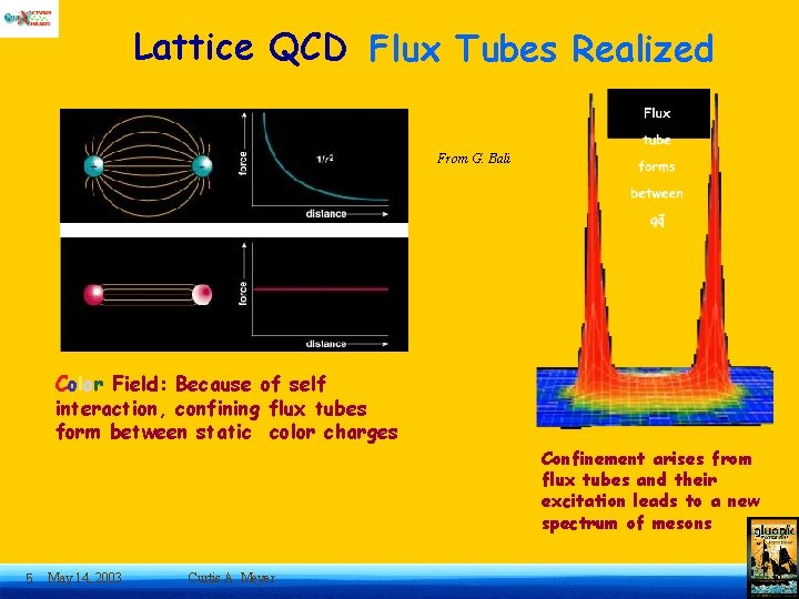 Lattice QCD Flux Tubes Realized From G. Bali Color Field: Because of self interaction,