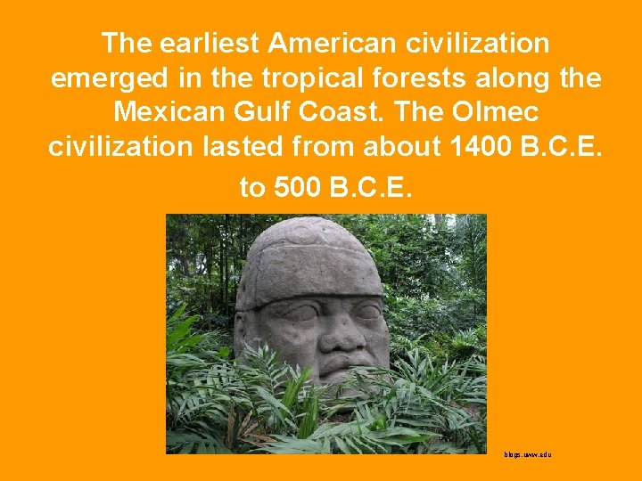 The earliest American civilization emerged in the tropical forests along the Mexican Gulf Coast.