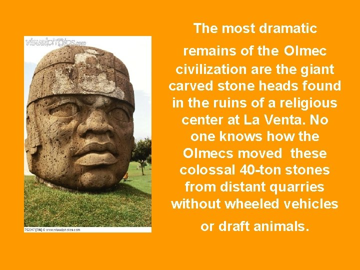 The most dramatic remains of the Olmec civilization are the giant carved stone heads