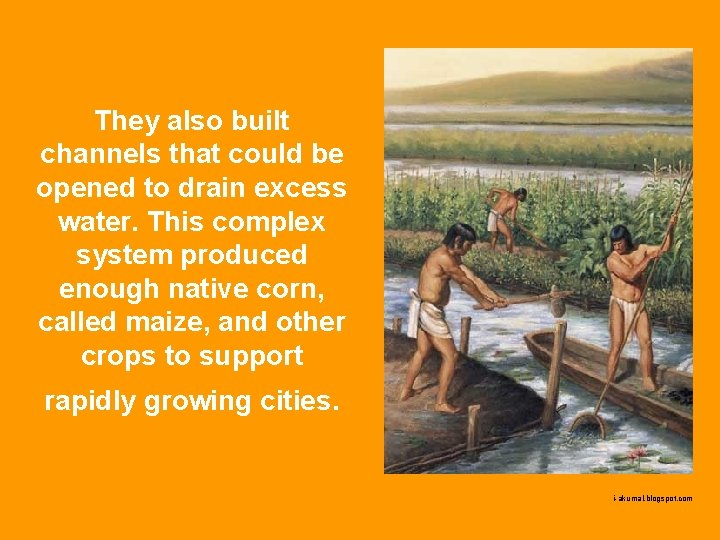 They also built channels that could be opened to drain excess water. This complex
