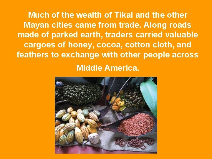 Much of the wealth of Tikal and the other Mayan cities came from trade.