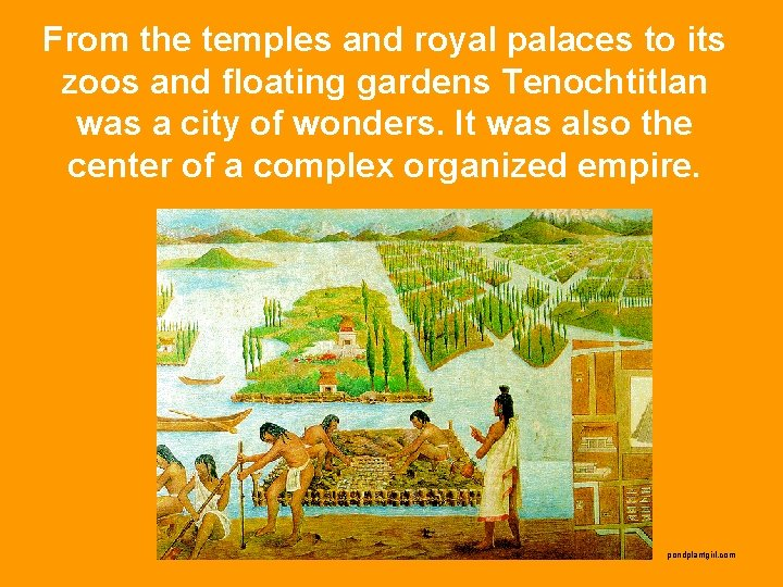 From the temples and royal palaces to its zoos and floating gardens Tenochtitlan was