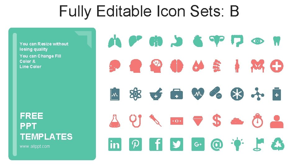 Fully Editable Icon Sets: B You can Resize without losing quality You can Change