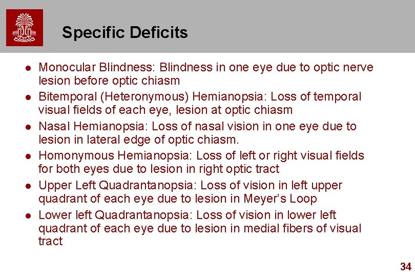 Specific Deficits l l l Monocular Blindness: Blindness in one eye due to optic