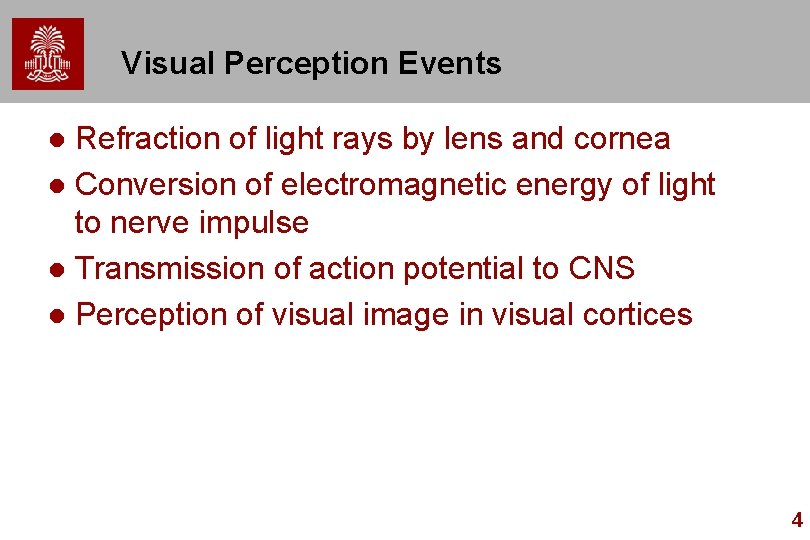 Visual Perception Events Refraction of light rays by lens and cornea l Conversion of
