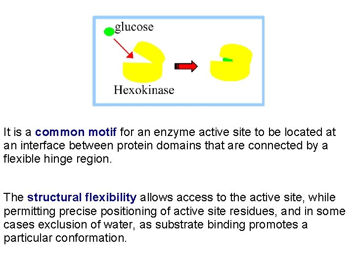 It is a common motif for an enzyme active site to be located at