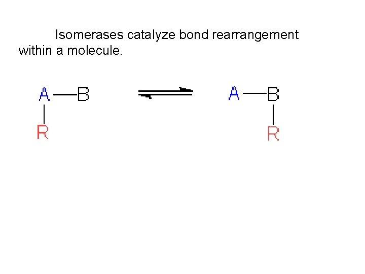 Isomerases catalyze bond rearrangement within a molecule.