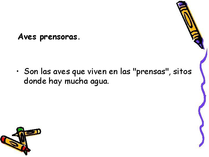 """Aves prensoras. • Son las aves que viven en las """"prensas"""", sitos donde hay"""