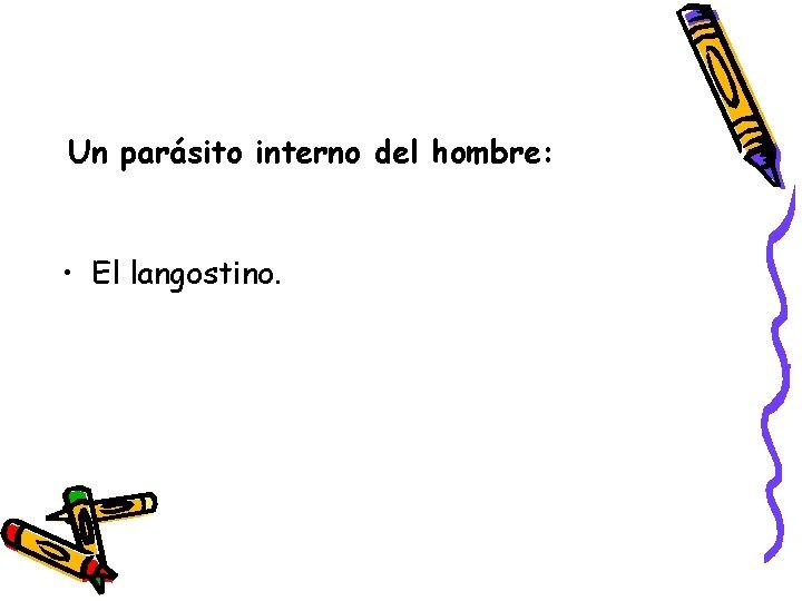 Un parásito interno del hombre: • El langostino.