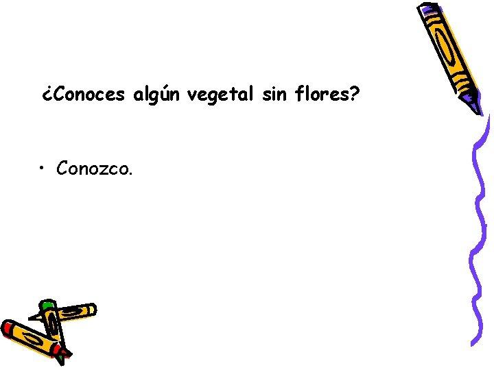 ¿Conoces algún vegetal sin flores? • Conozco.