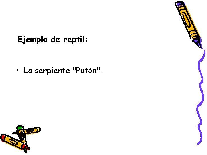"""Ejemplo de reptil: • La serpiente """"Putón""""."""