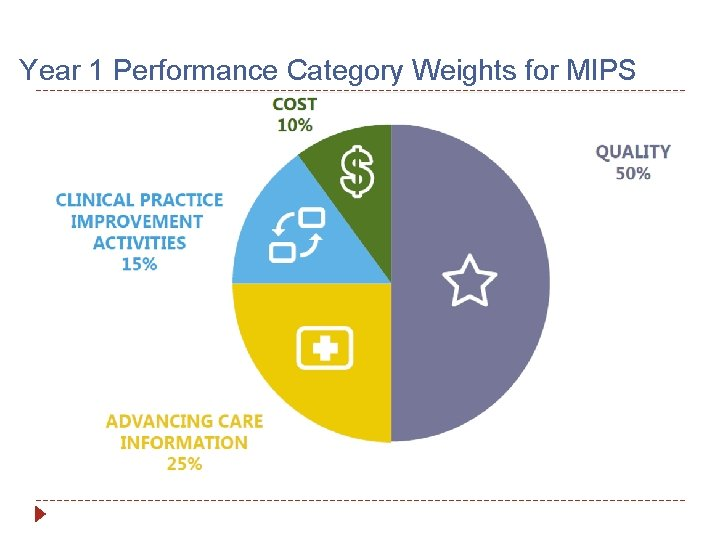 Year 1 Performance Category Weights for MIPS