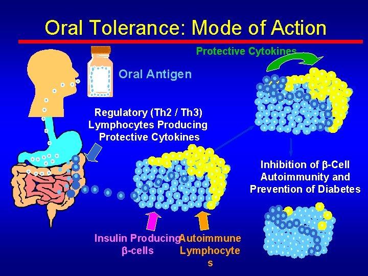 Oral Tolerance: Mode of Action Protective Cytokines Oral Antigen Regulatory (Th 2 / Th