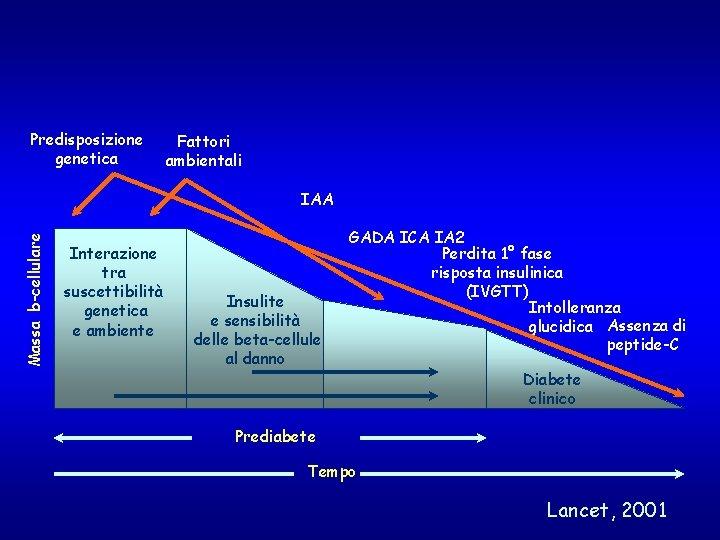 Predisposizione genetica Fattori ambientali Massa b-cellulare IAA Interazione tra suscettibilità genetica e ambiente Insulite