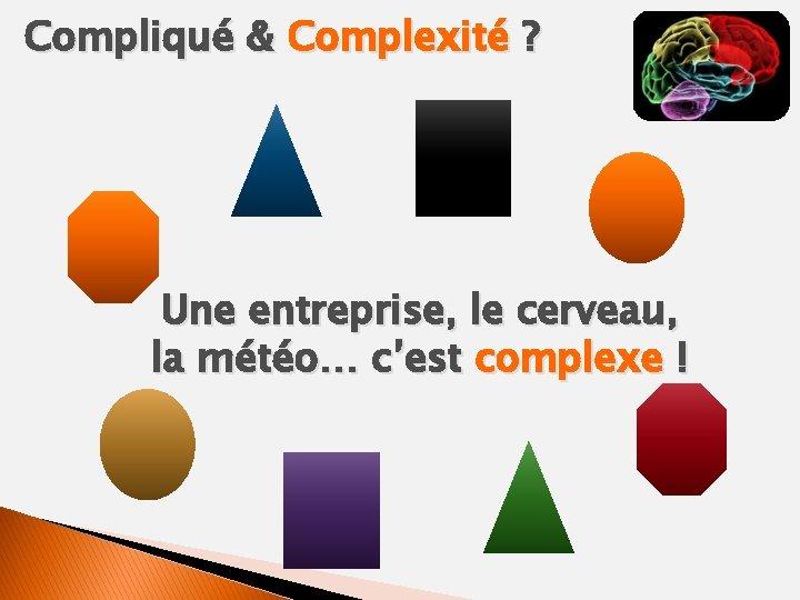 Compliqué & Complexité ? Une entreprise, le cerveau, la météo… c'est complexe !