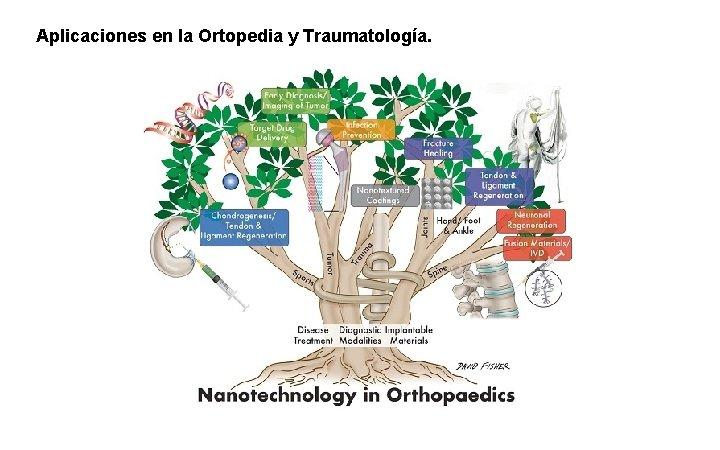 Aplicaciones en la Ortopedia y Traumatología.