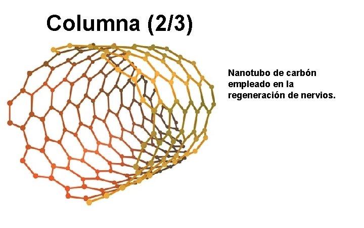 Columna (2/3) Nanotubo de carbón empleado en la regeneración de nervios.