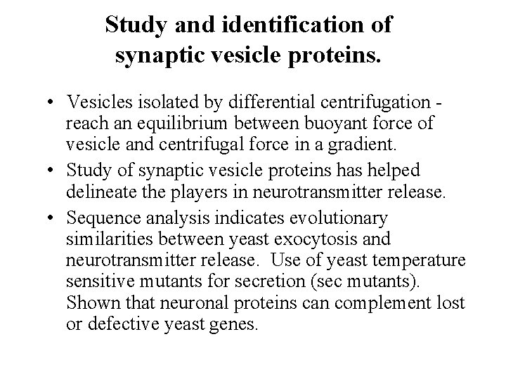 Study and identification of synaptic vesicle proteins. • Vesicles isolated by differential centrifugation -