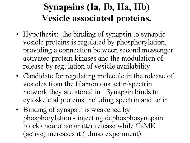 Synapsins (Ia, Ib, IIa, IIb) Vesicle associated proteins. • Hypothesis: the binding of synapsin