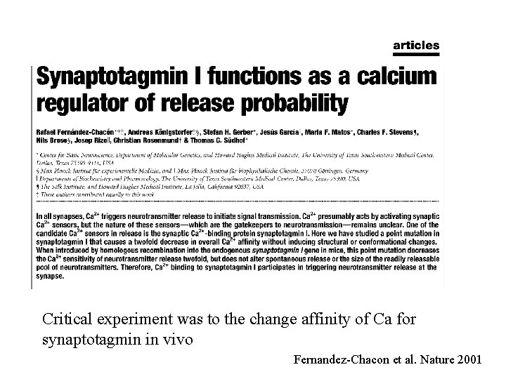 Critical experiment was to the change affinity of Ca for synaptotagmin in vivo Fernandez-Chacon