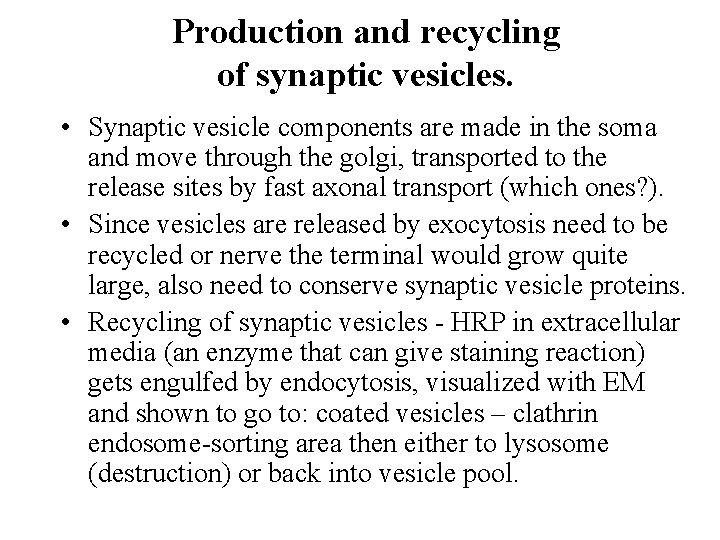 Production and recycling of synaptic vesicles. • Synaptic vesicle components are made in the