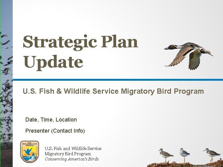 Strategic Plan Update U. S. Fish & Wildlife Service Migratory Bird Program Date, Time,
