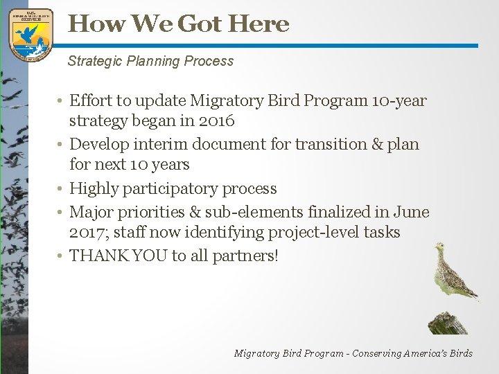 How We Got Here Strategic Planning Process • Effort to update Migratory Bird Program