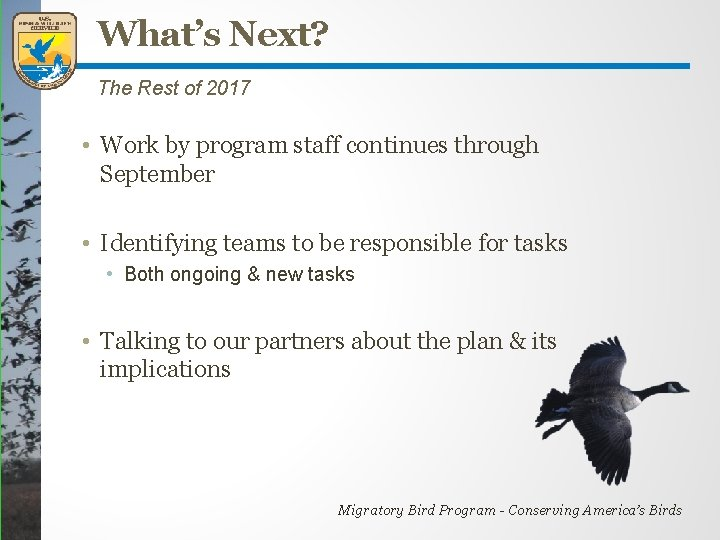 What's Next? The Rest of 2017 • Work by program staff continues through September
