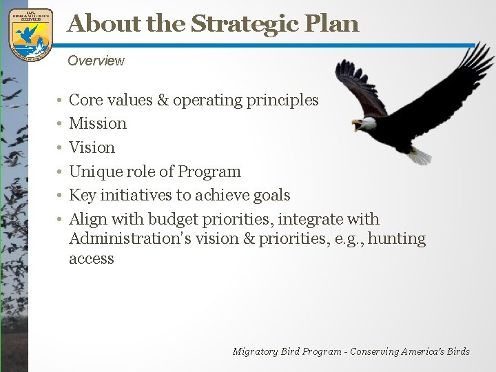 About the Strategic Plan Overview • • • Core values & operating principles Mission