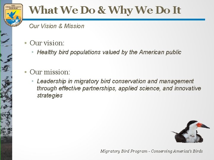 What We Do & Why We Do It Our Vision & Mission • Our