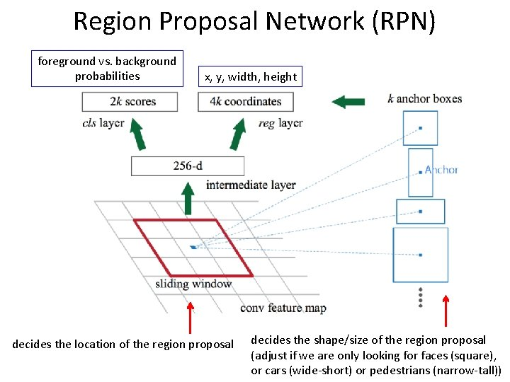 Region Proposal Network (RPN) foreground vs. background probabilities x, y, width, height decides the